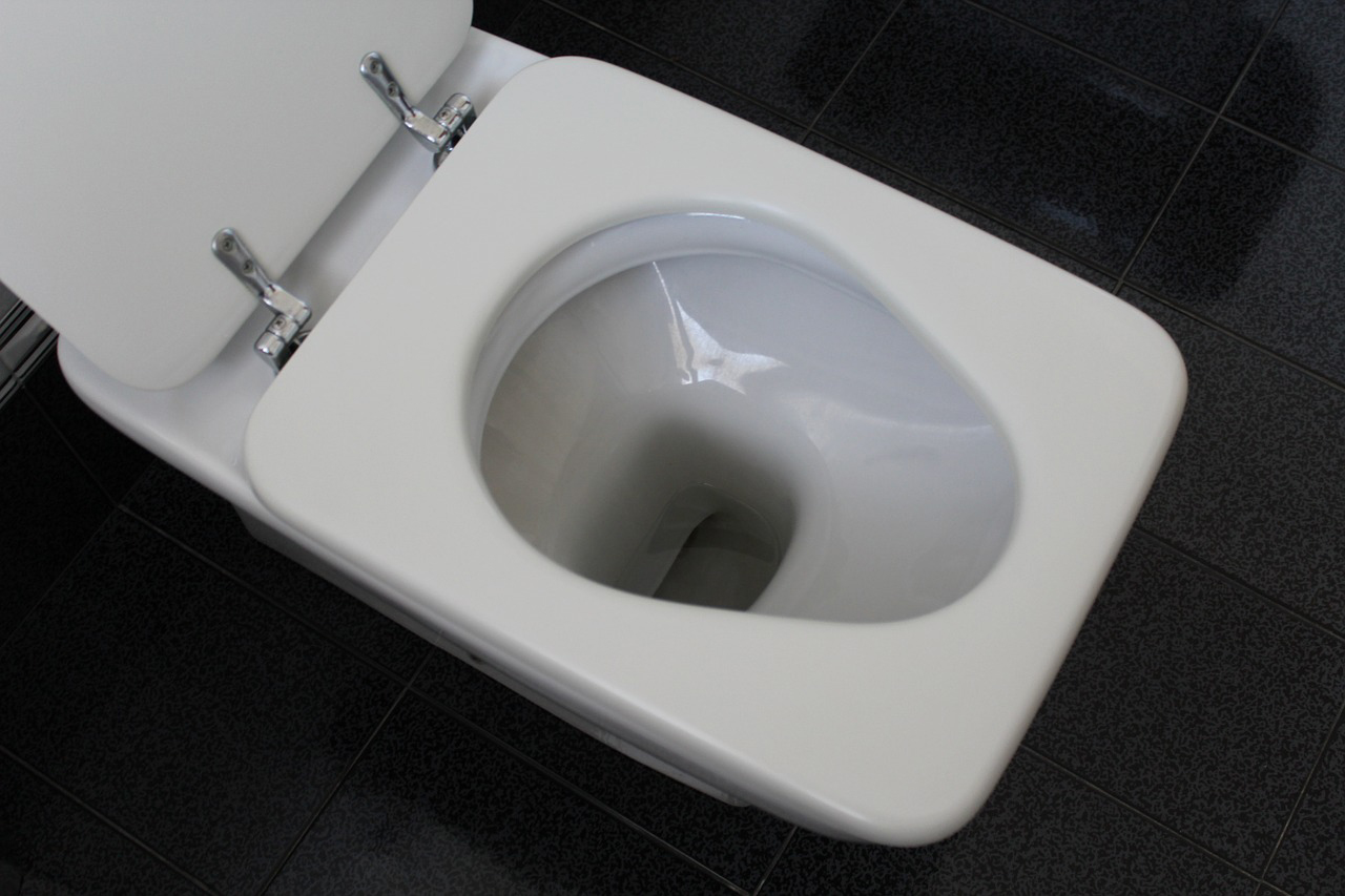 débouchage wc bordeaux